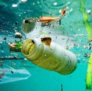 Campaña efectos de la contaminación del mar