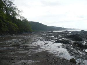 Reserva Juventino
